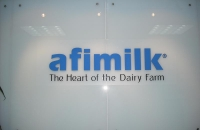 Thiết kế thi công nội thất văn phòng công ty AFIMILK